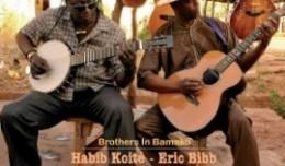 bibb-koite-brothers-290x170