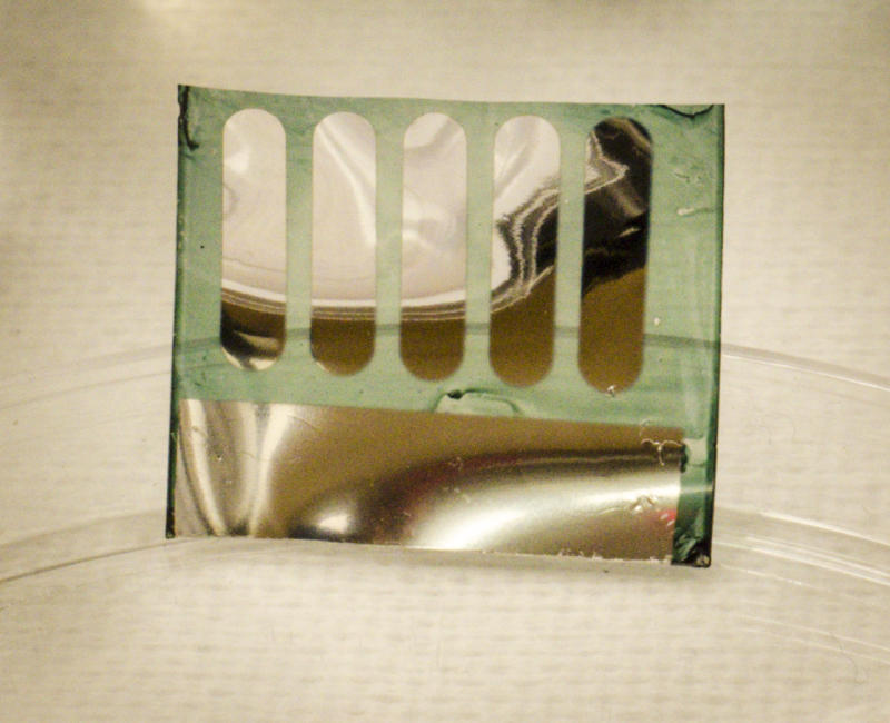 Photograph of a solar cell fabricated at Georgia Tech on nanocellulose substrates derived from trees. (Credit: Canek Fuentes-Hernandez, Georgia Tech)