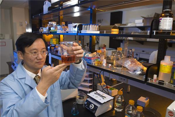 'Our new process could help end our dependence on fossil fuels,' said Y.H. Percival Zhang, an associate professor of biological systems engineering in the College of Agriculture and Life Sciences and the College of Engineering. 'Hydrogen is one of the most important biofuels of the future.' (Credit: Image courtesy of Virginia Tech)
