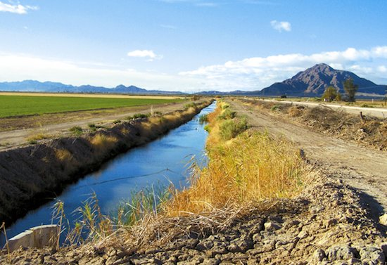 Irrigation canals crisscross the Imperial Valley, delivering Colorado River water that turns the desert into productive farmland. Photo/California Farm Bureau Federation