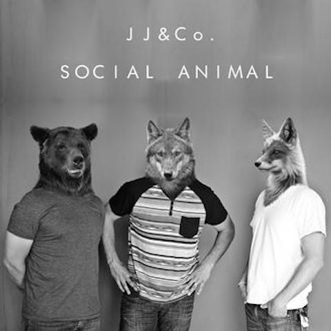 jj-co-social-animal