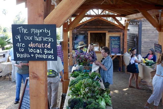 Opening day, April 9, 2016, of Coastal Roots Farm's 'pay what you can' Farm Stand, a new social enterprise that will support the Farm's mission to ensure that everyone in its community has fair and equal access to local, sustainable food grown using only biodynamic and organic processes.
